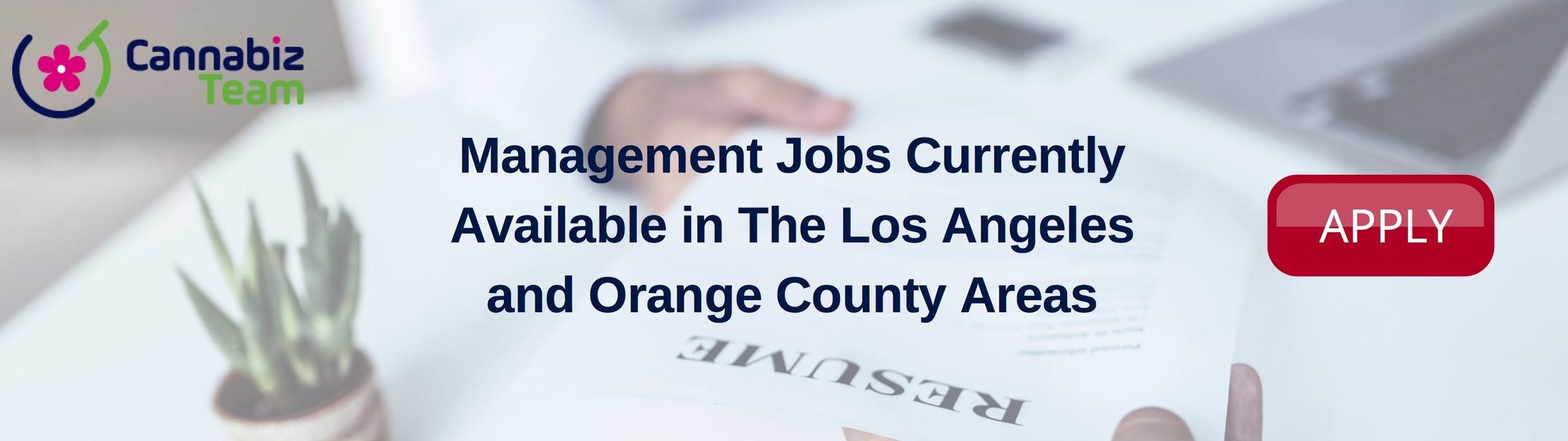 Management Jobs Apply Banner.jpg