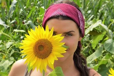 sun-flower-2699771_640.jpg