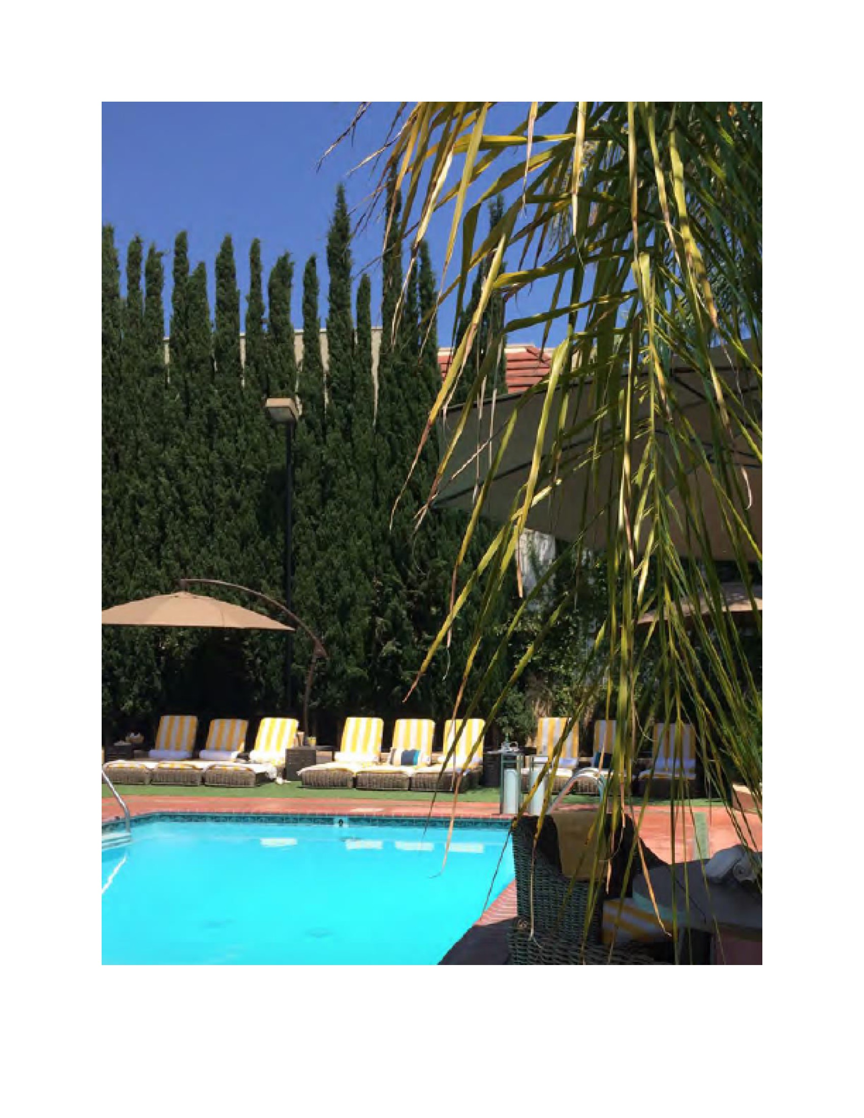 June Modeliste Hollywood Hotel 3-19.jpeg
