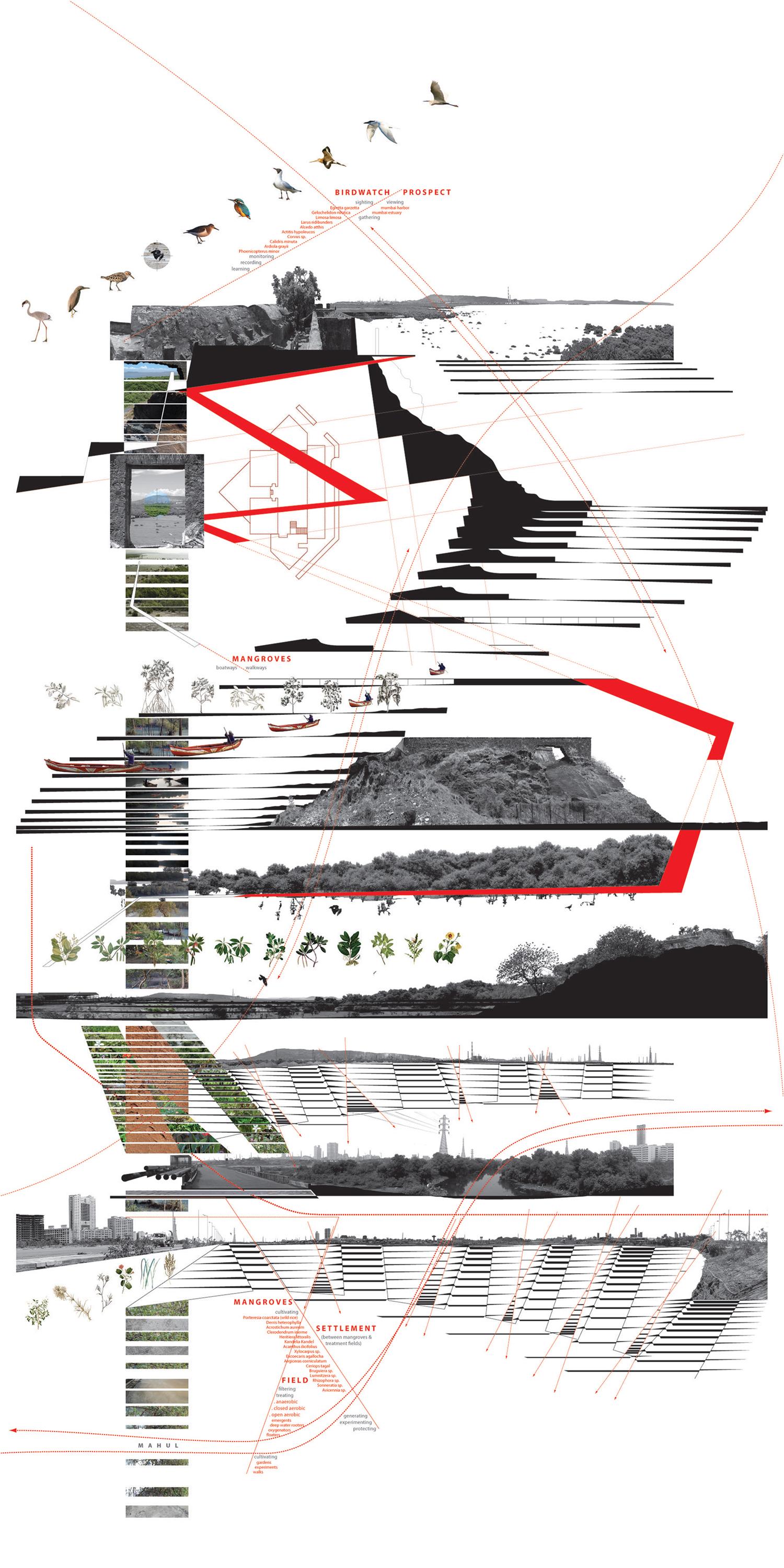 5B_sewri-fort-project.jpg