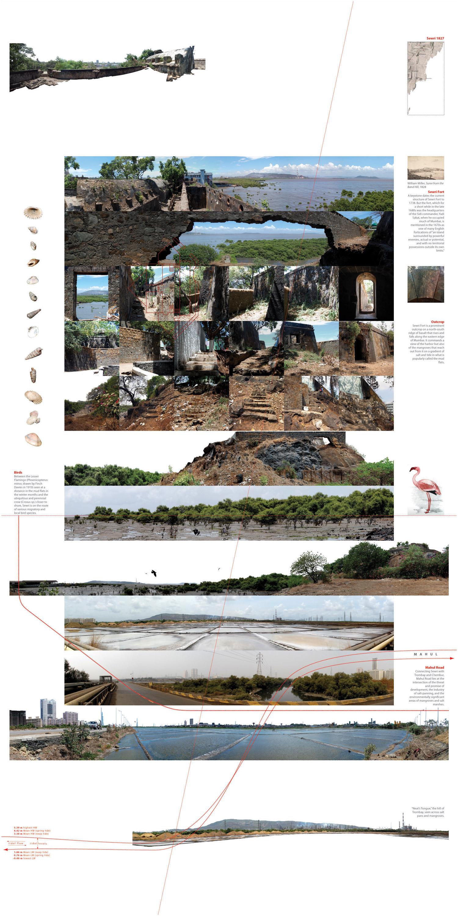 5A_sewri-fort-photowork.jpg