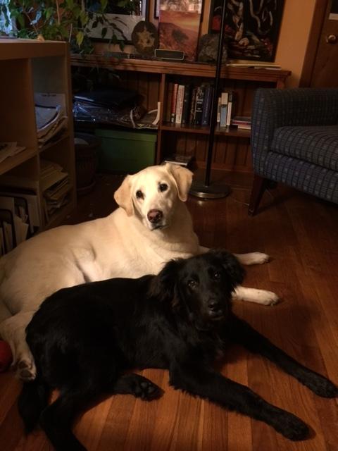 Truman and Ralf.JPG