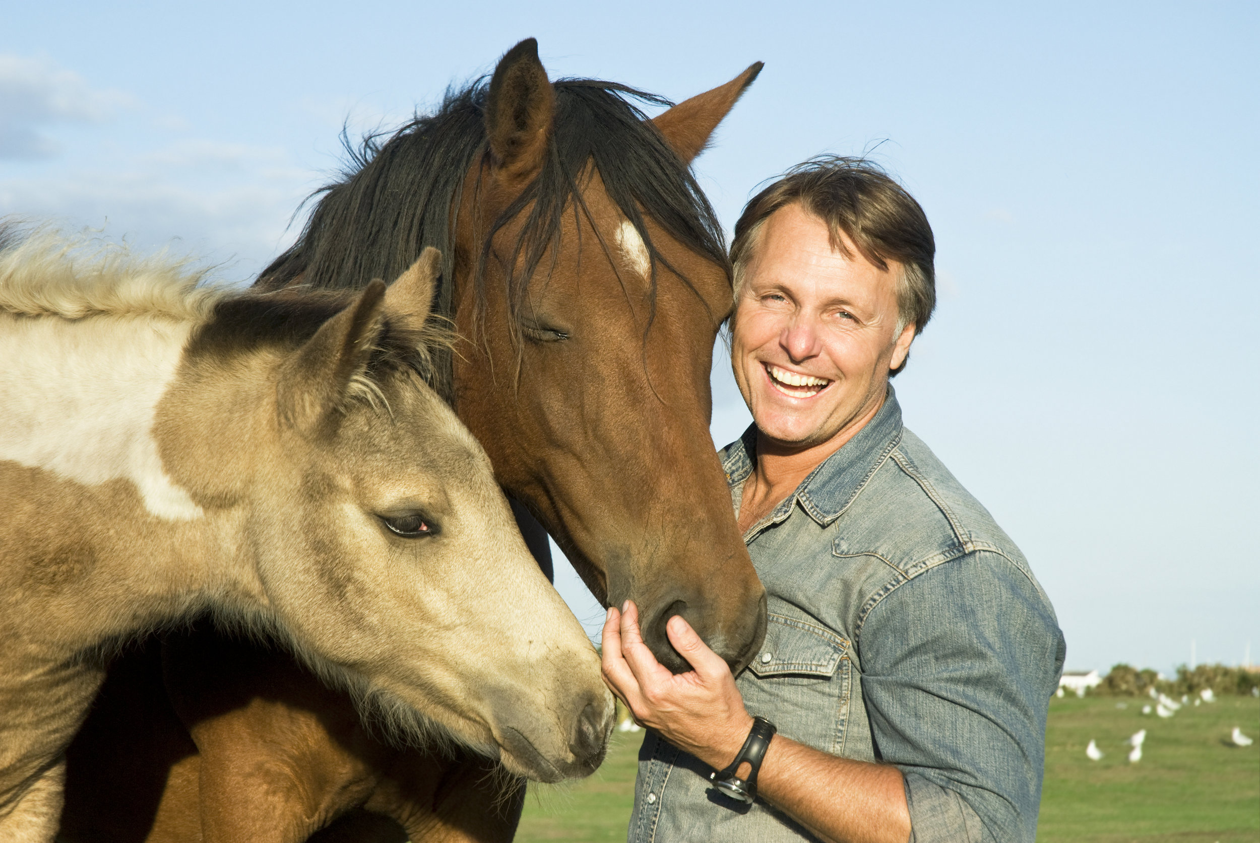 Equine Assisted Psychotherapy - Children, Adults and Families