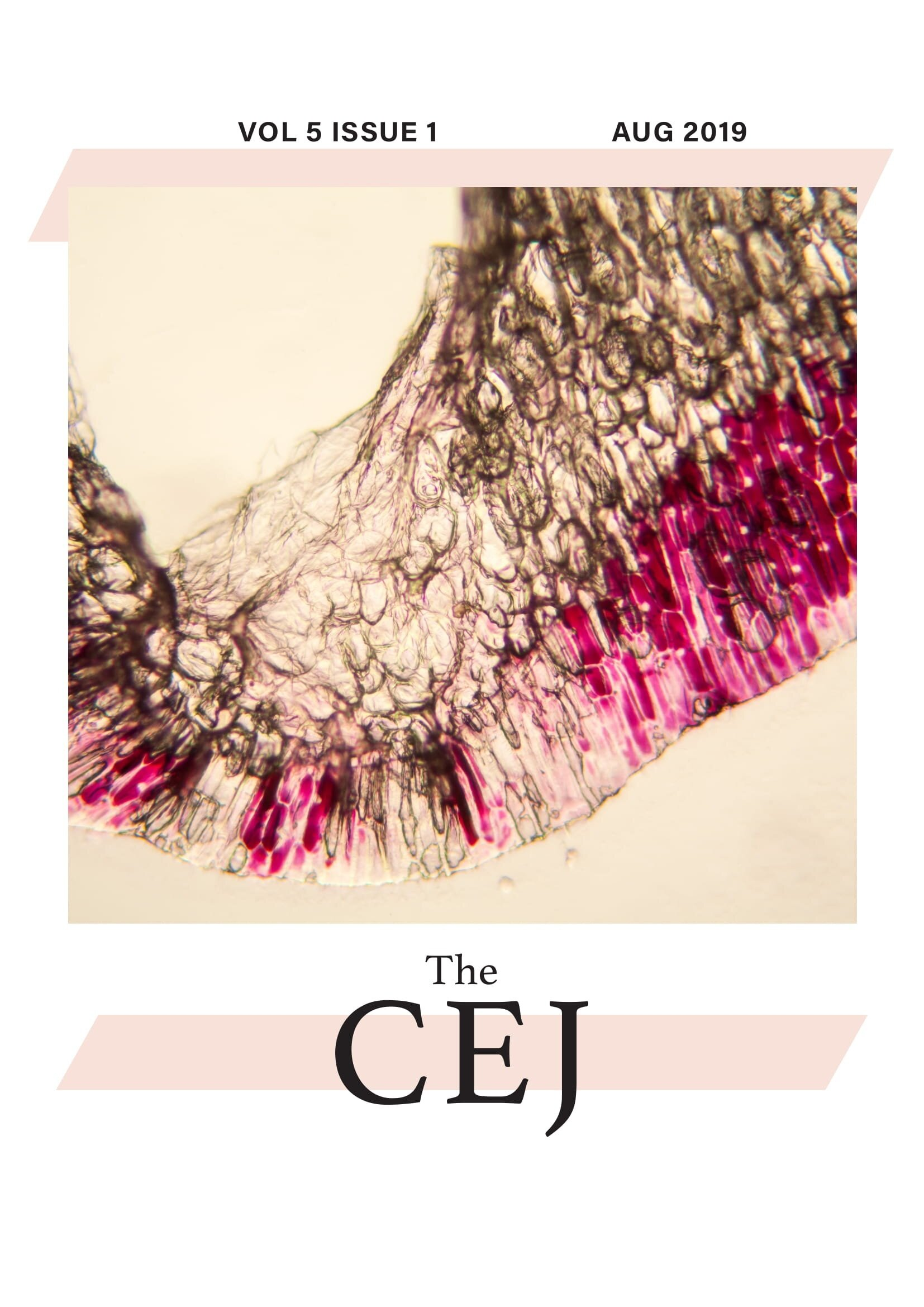 The CEJ (Vol 5 issue 1)