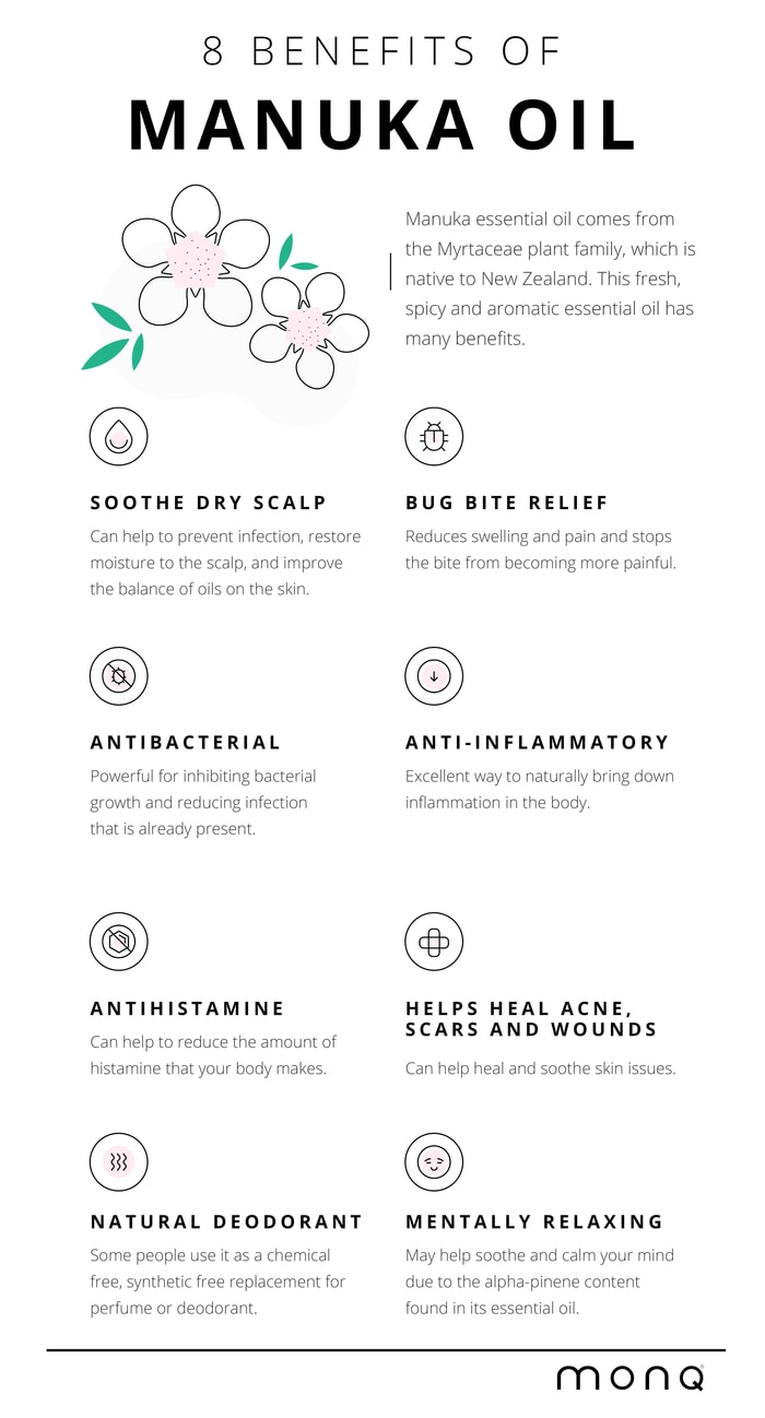 benefits of manuka essential oil which is related to tea tree