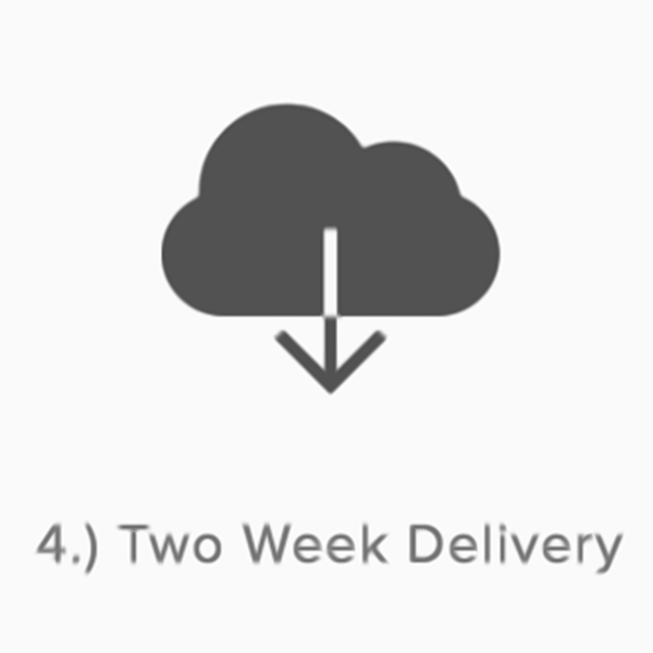 Two-Week-Delivery-Weddings-Recorded.png