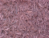 Dyed red mulch - Shredded bark/wood mulch that has been dyed red. Makes a bold landscape statement all by itself.