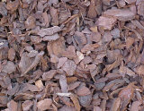 Bark nuggets - Nuggets last longer than shredded hardwood mulches and are available in different sized nuggets. Brown color with a pleasant pine odor.