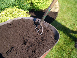 Dyed brown double-shredded mulch being spread with a pitch fork.     VIDEO: How the Pros spread mulch
