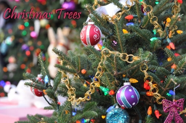 christmas-tree-decorations.jpg
