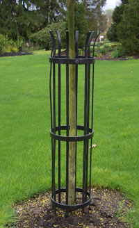 Effective and attractive tree trunk protection