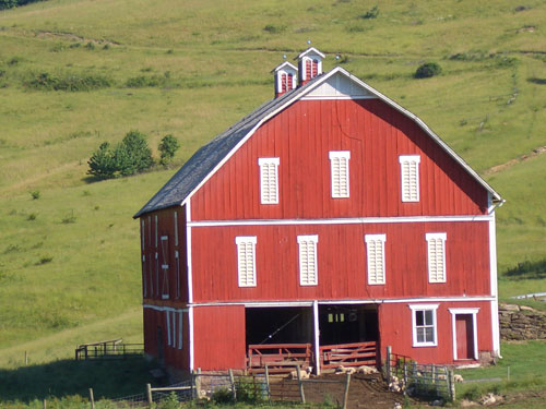 Red sheep Barn with Cupolas