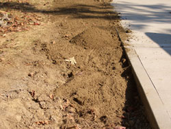 Calculate how much screened topsoil you will need for your finished grade. Lightly tamp or walk over the new topsoil as it is added to compact it. Be careful not to compact wet soil too much. -