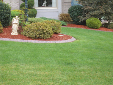 Cement Curbing - (Brick coloration and impression)