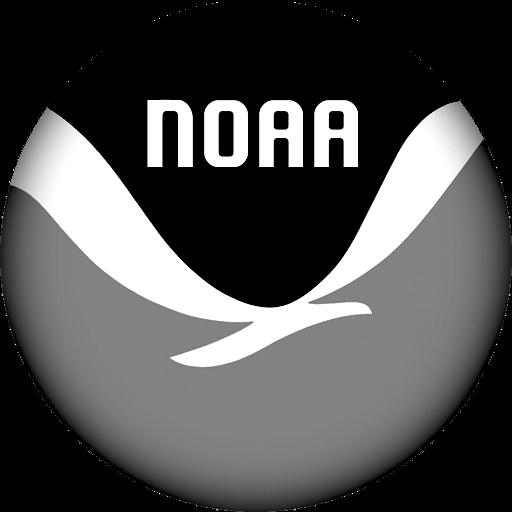 NOAA_seal-shadowed copy.png