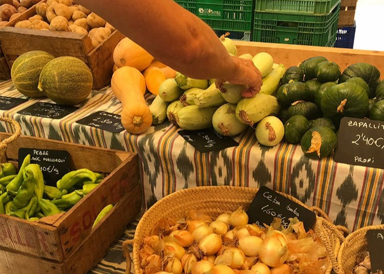 COMIDA PARA TODOS   El Toftevaag es un barco inclusivo. Por ello hemos pensado cuidadosamente en un menú que satisface la mayoría de las necesidades alimenticias, incluyendo comida para veganos, vegetarianos, pescatarianos, comidas con bajo IG y sin gluten. ¡Y por supuesto, también para omnívoros! Y nuestros ingredientes provienen de mercados locales de agricultores orgánicos, sin envase. Des esta forma, a lo largo de los años, hemos logrado reducir nuestro consumo de plástico en un 90%.