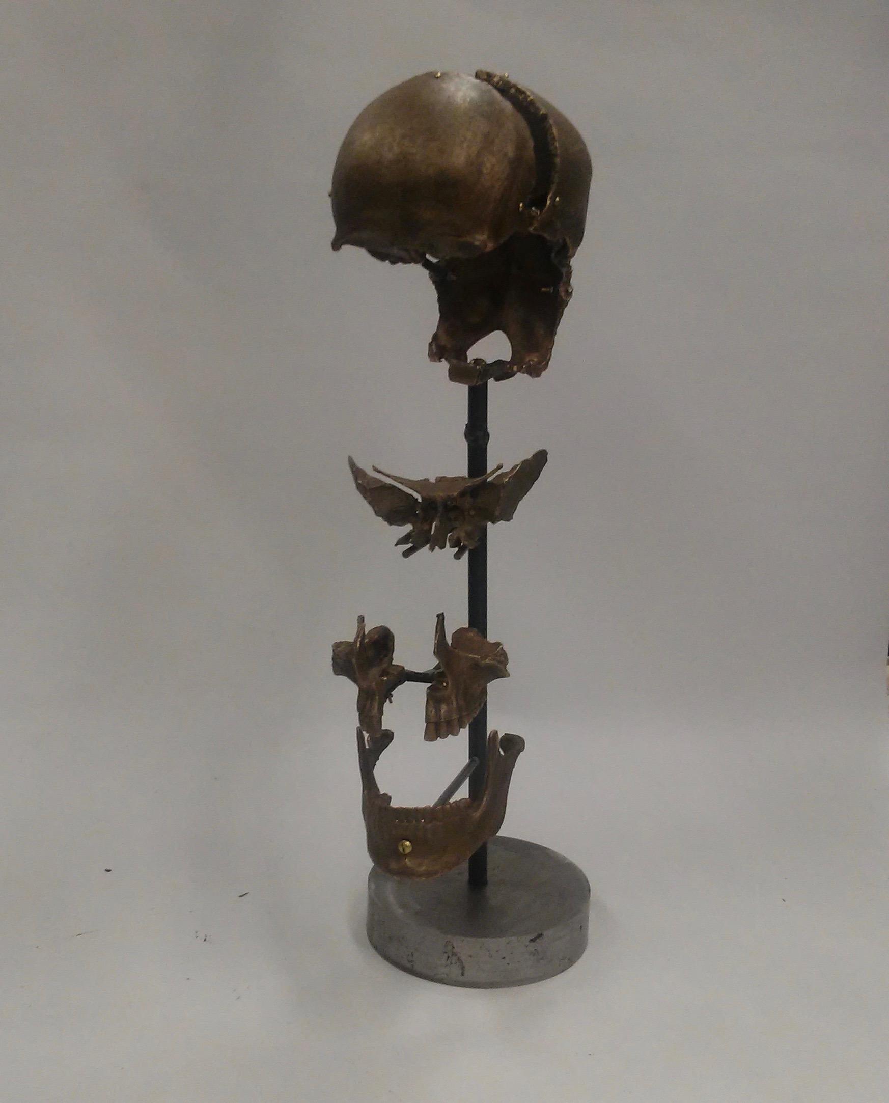 Morris Wazney Exploded Skull.jpg