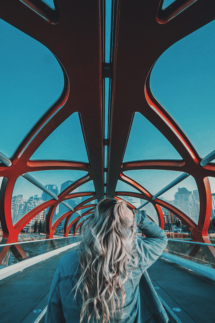 peace bridge 2.jpg