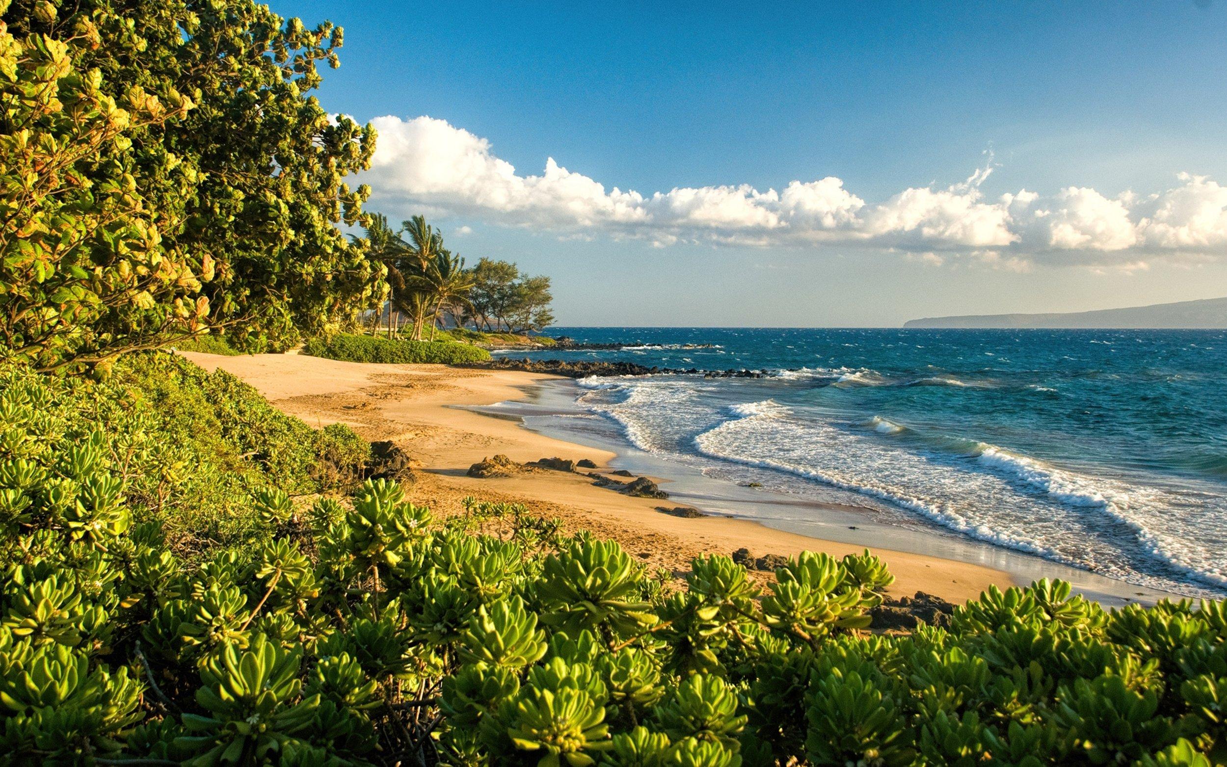 Polo Beach Maui.jpg