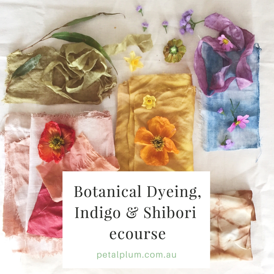 Botanical Dyeing, Indigo & Shibori ecourse : $59 AU -