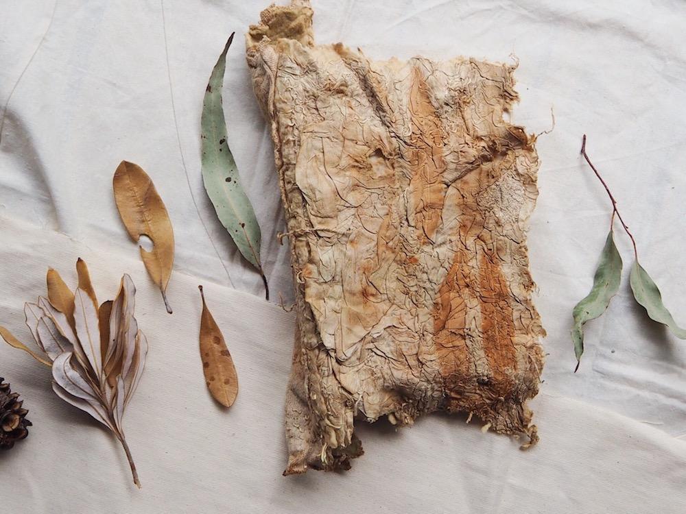 Ellie BEck Petalplum eco-printed handbound art journal nature journal botanical dye natural dye leaves fabrics.JPG