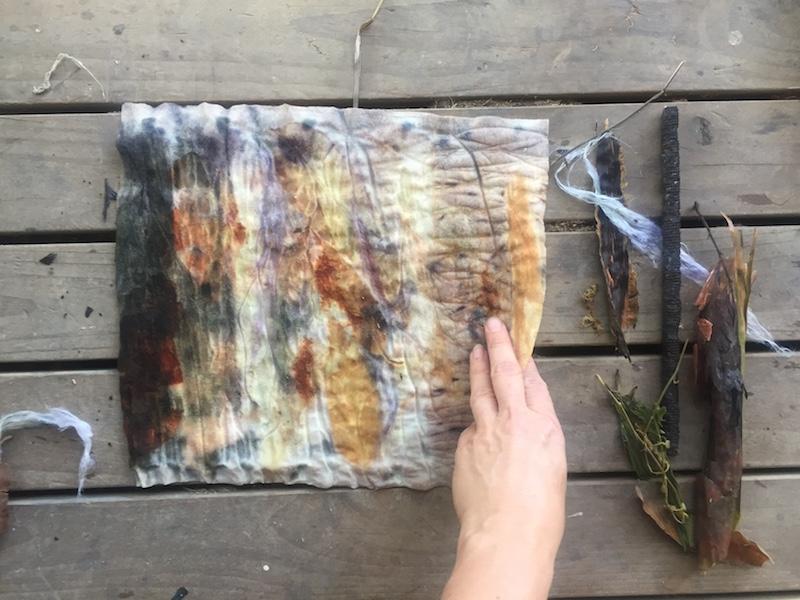 Ellie Beck Petalplum eco-printing natural dye on fabric felt plants leaves natural colour.JPG