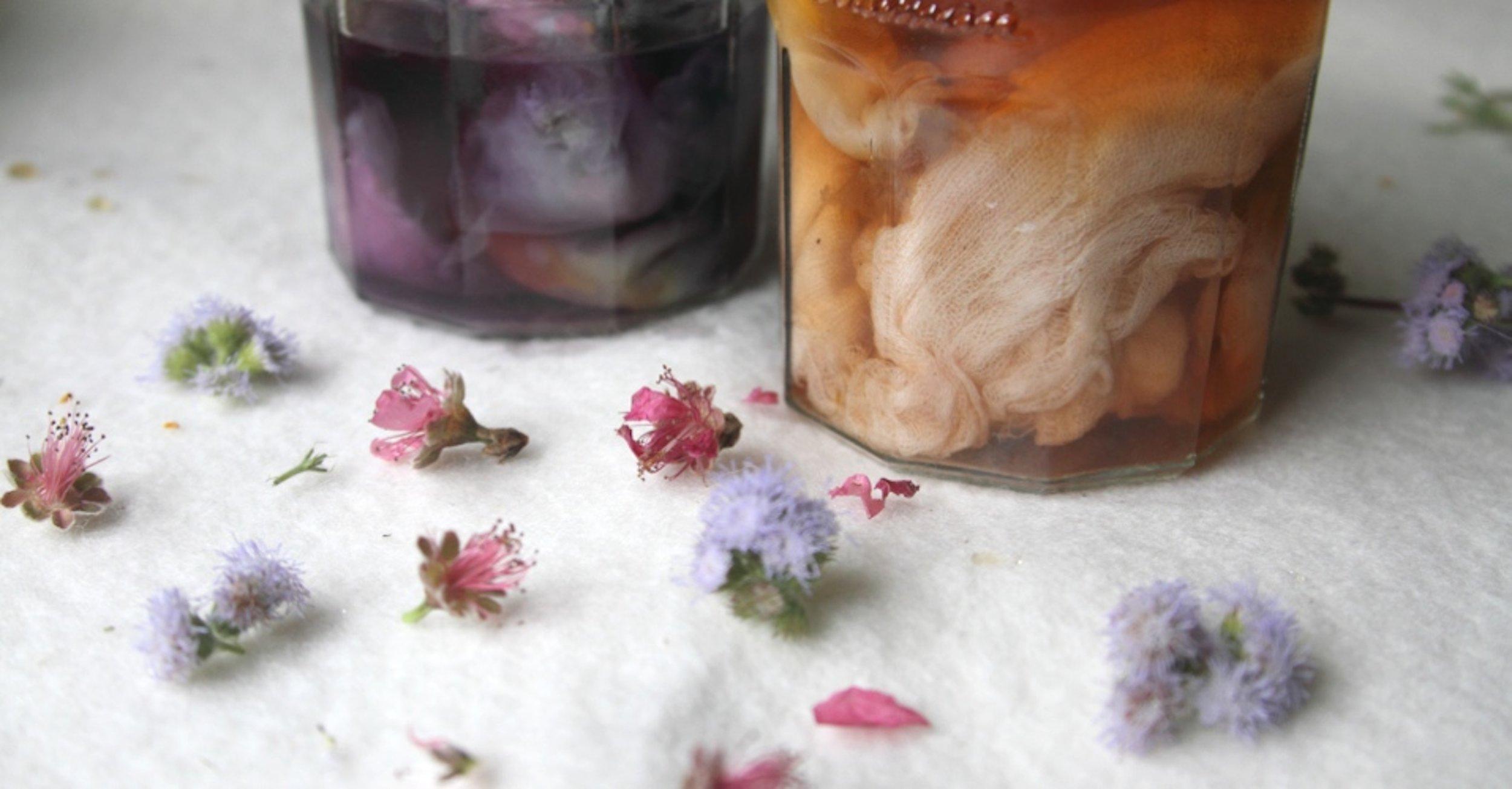dye colour jar cropped. Ellie Beck Petalplum