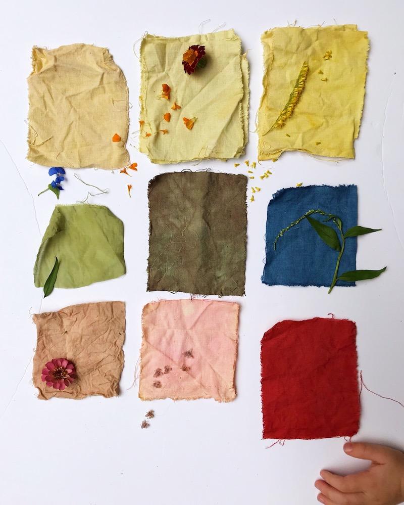 Ellie Beck Petalplum blog naturally dye fabrics.JPG