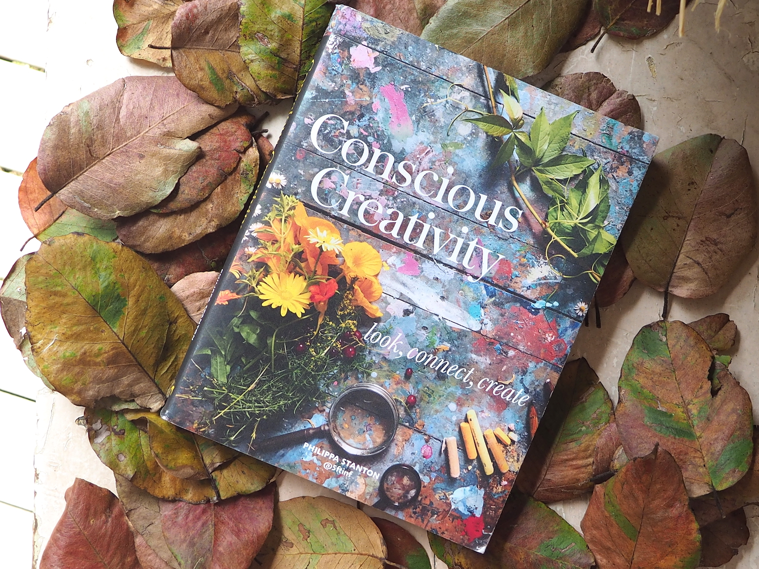 Conscious Creativity book by Philippa Stanton @5fftinf - Petalplum blog.JPG