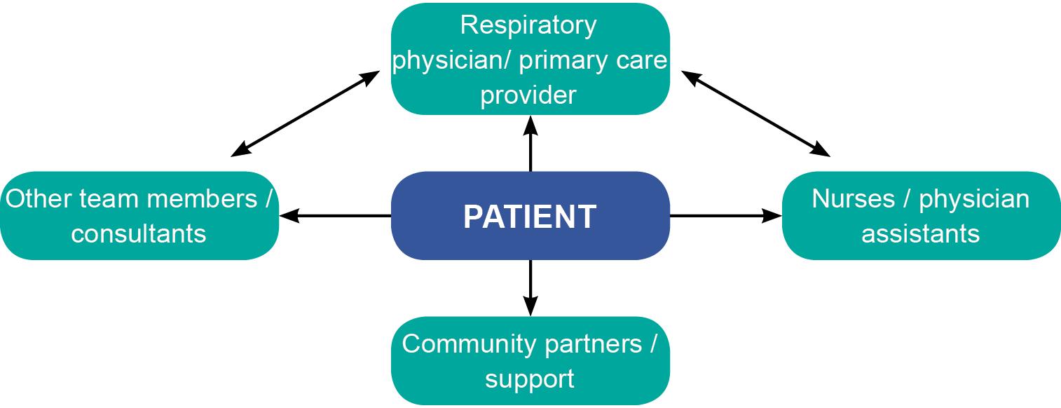 Figure 9: IPF multidisciplinary team (adapted from: ¹�)