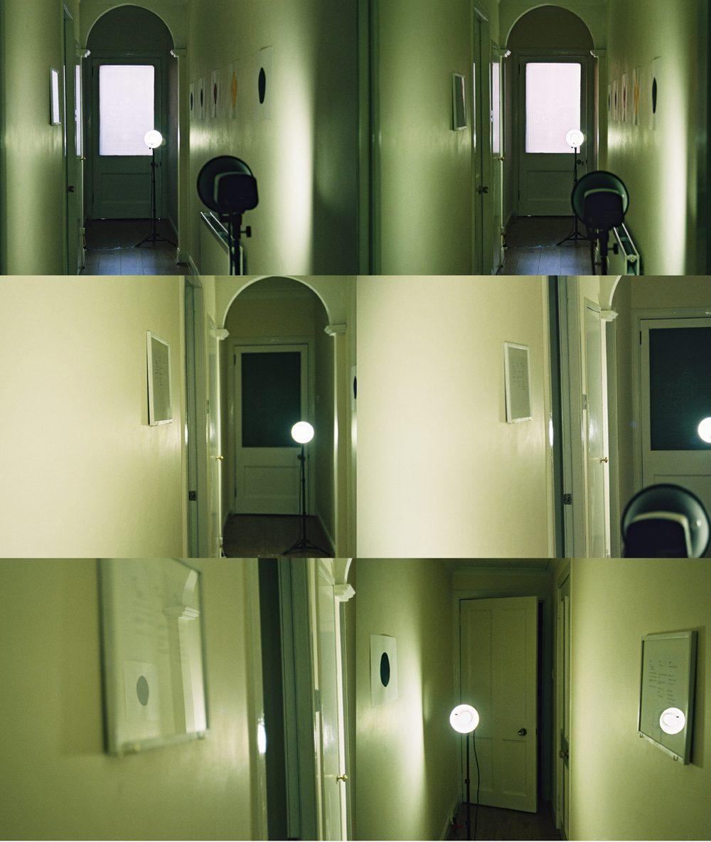 Orchids, Catherine Street, documentation of installation at No.35, Alexander Hetherington, 2017.