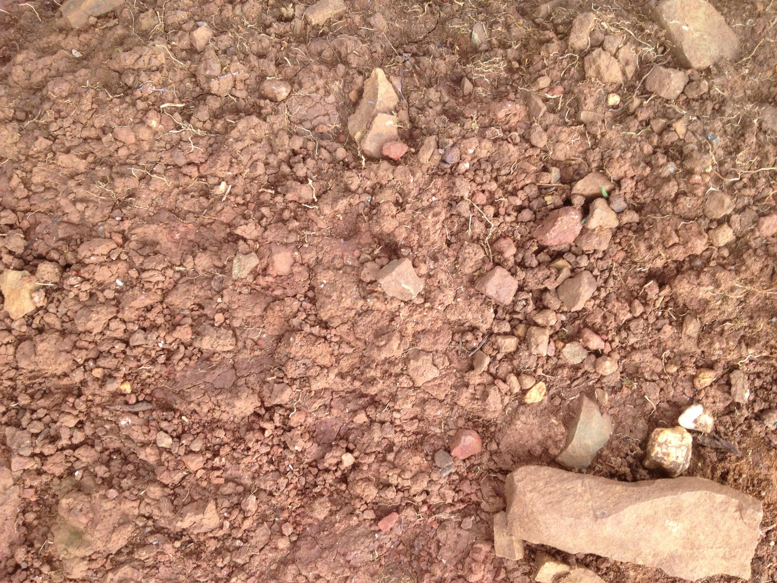 Moondarra soil 2.jpg