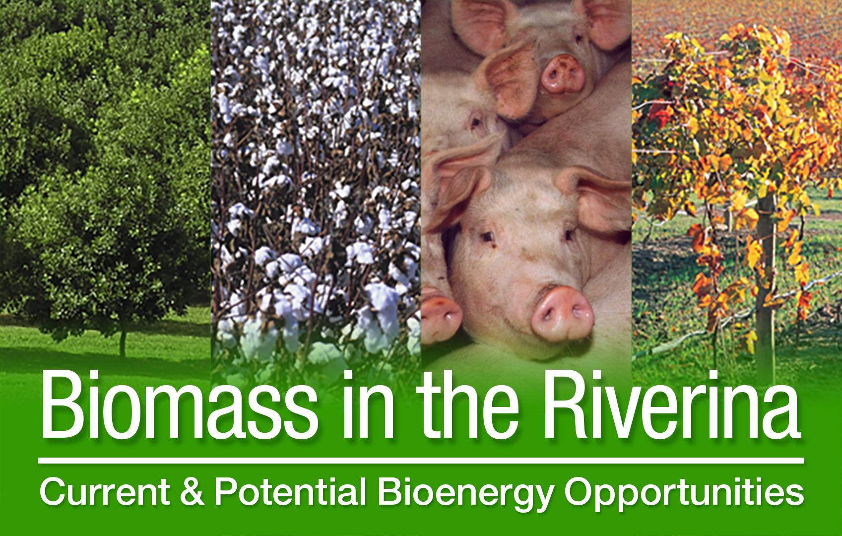 Biomass-Riverina-Forum-header-high-res.jpg