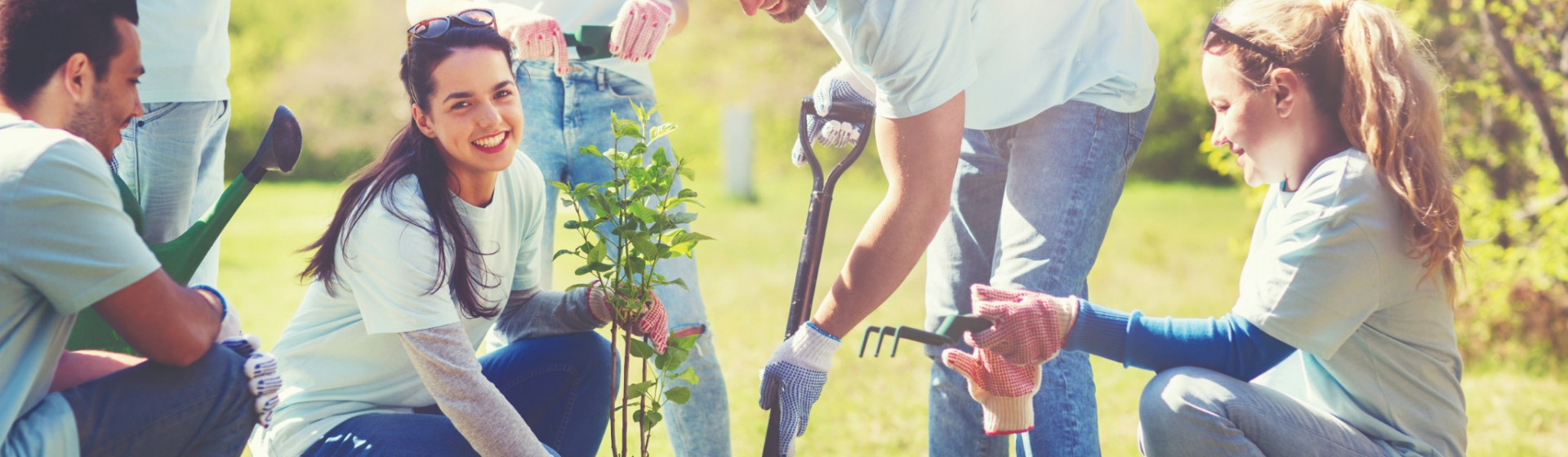 Group-of-people-digging-a-hole-to-plant-a-tree2.jpg