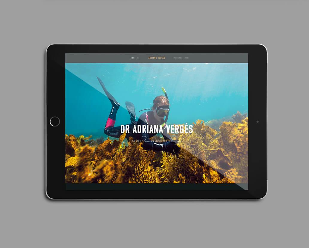 DR ADRIANA VERGES                                     Personal Website Design