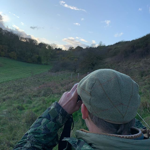 I SPY - Beautiful evening stalking on a stalking recce in Wiltshire yesterday. There are lots of deer about both here and on other estates we work with across the south. There were plenty of bucks who have cast their antlers already, too.  #deerstalking #countrysports #cantbeatthecamo #getintouchtotryitout