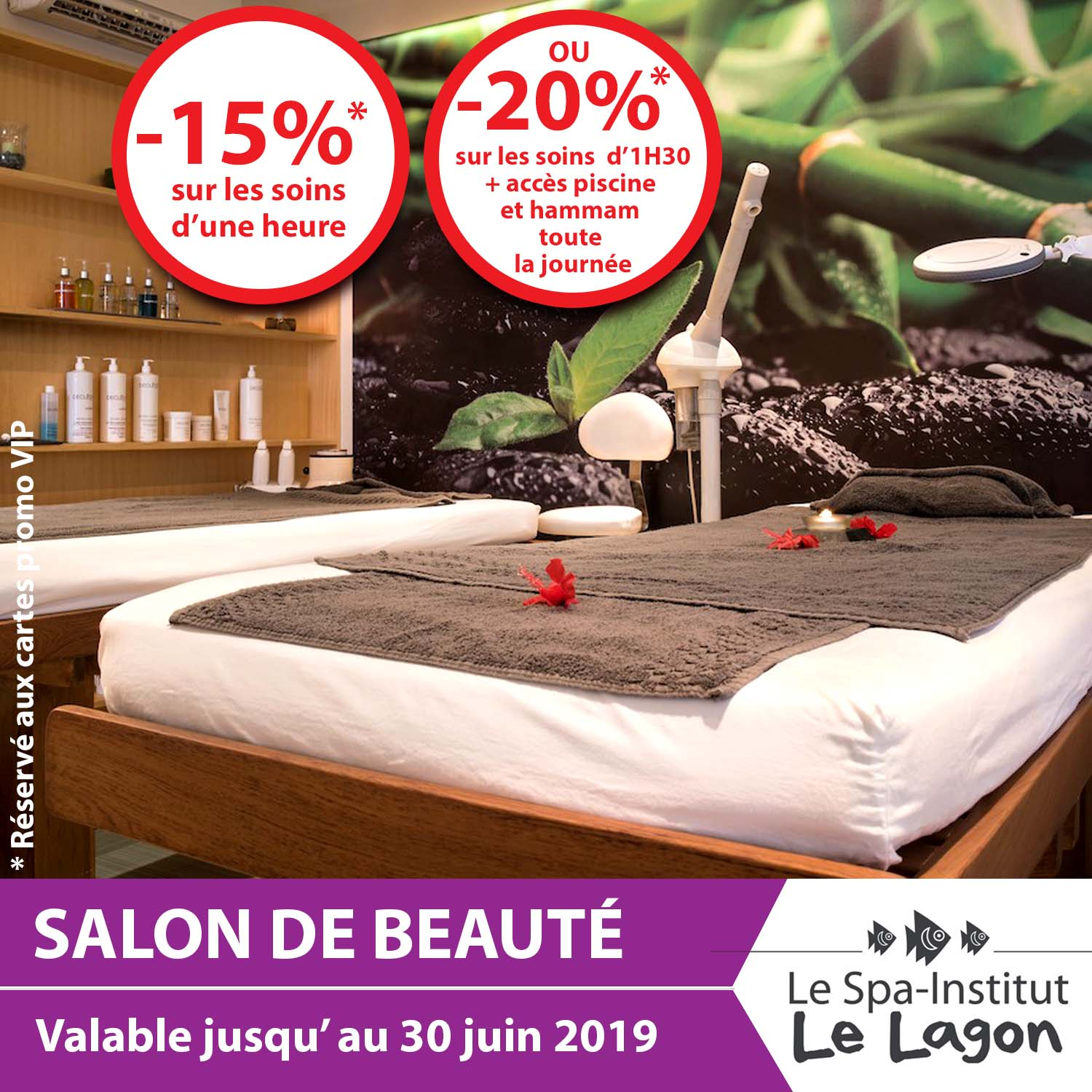 CARTES PROMOS VIP SPA INSTITUT LE LAGON 2 visuel site TOP PROMOS.jpg