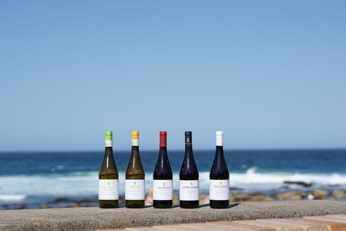 Pianogrillo wines.jpeg