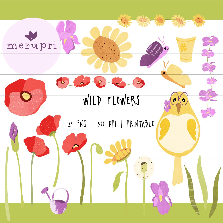 wildflowers_merupricuteillus_cover.jpg