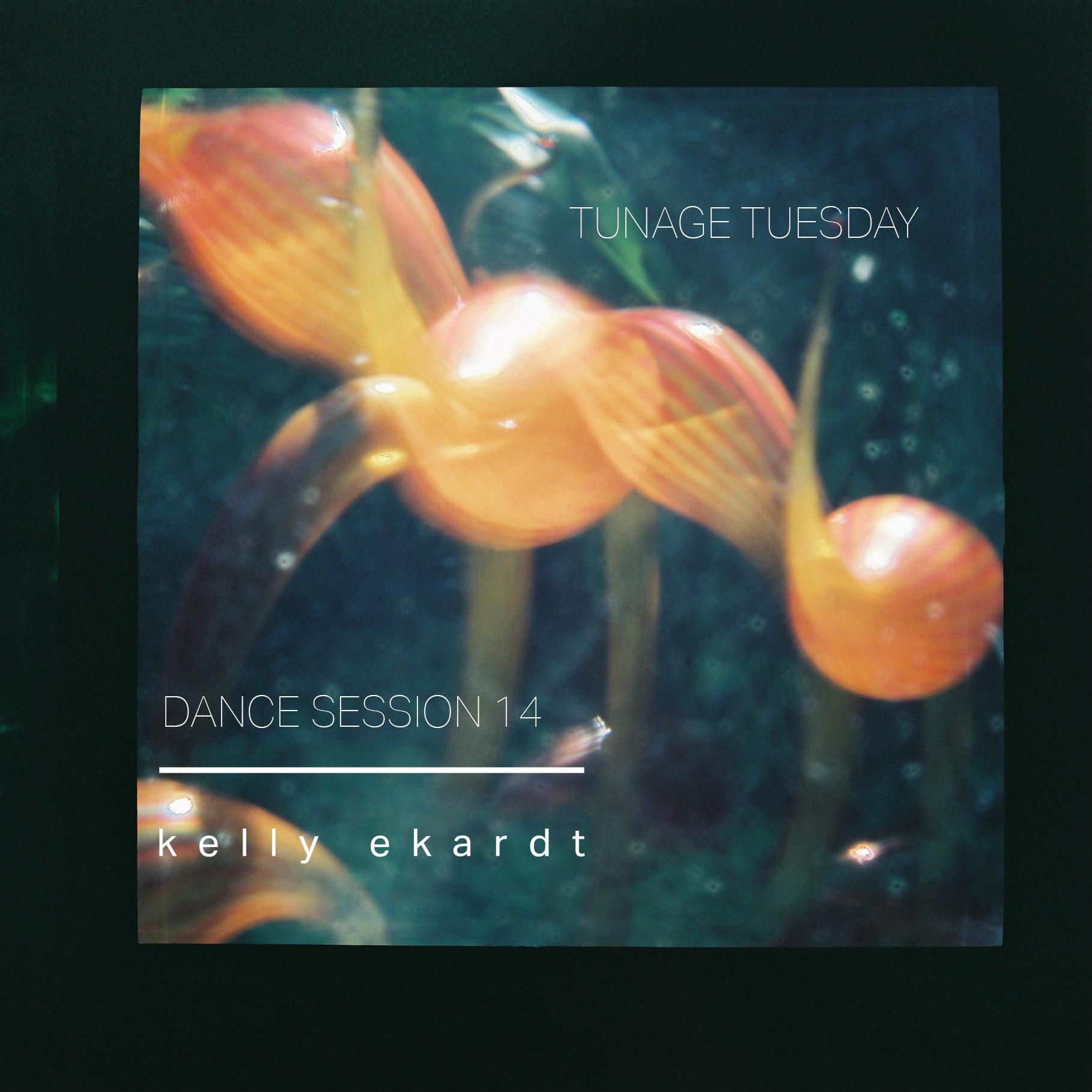 DANCE SESSION 14.jpg
