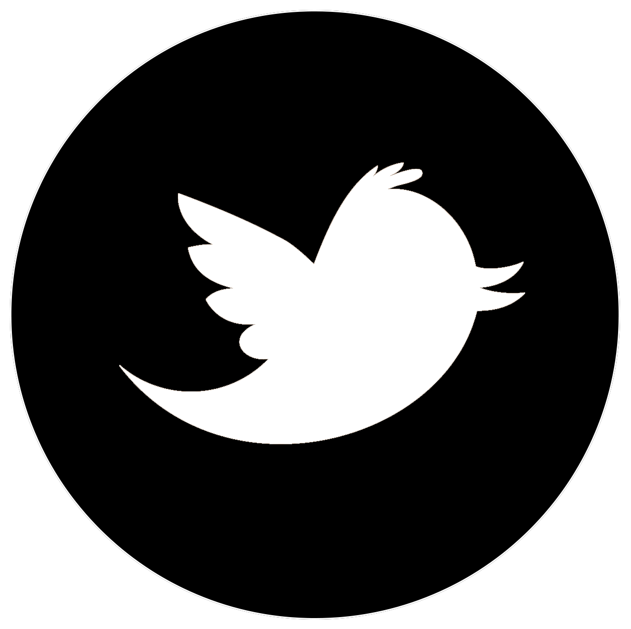 twiiter icon b.png