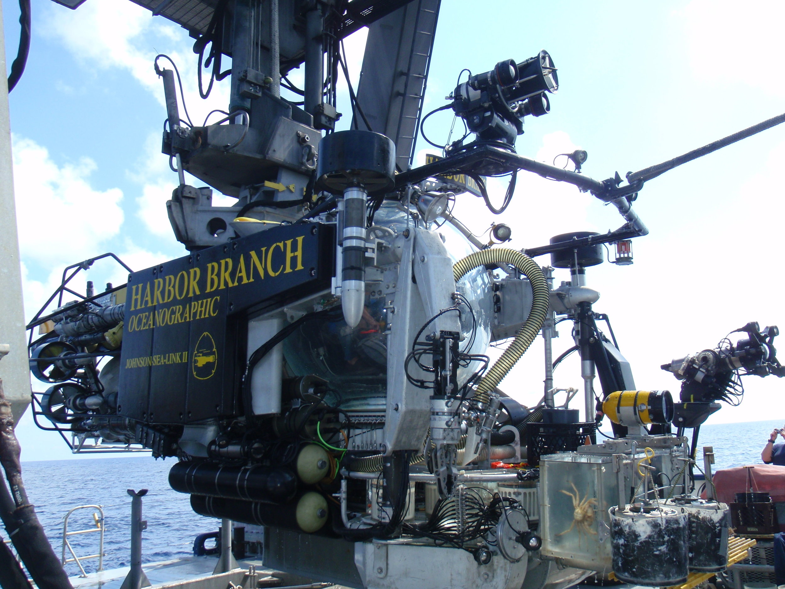 HBOI@FAU Johnson Sealink II submersible. Supported operations as engineer, technician, navigator, swimmer, and co-pilot.