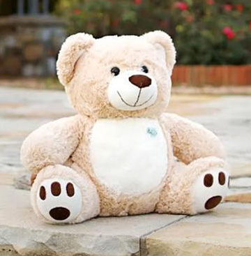 Molly-Bears-Sitting-Stone.jpg