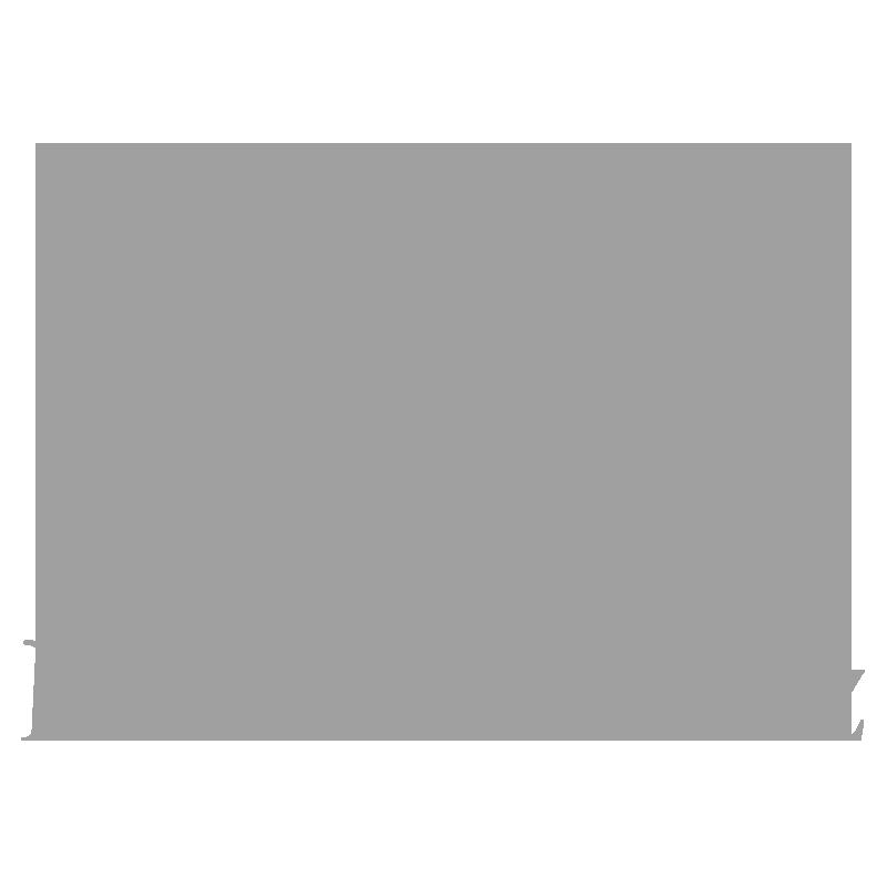 mercedes grey.png