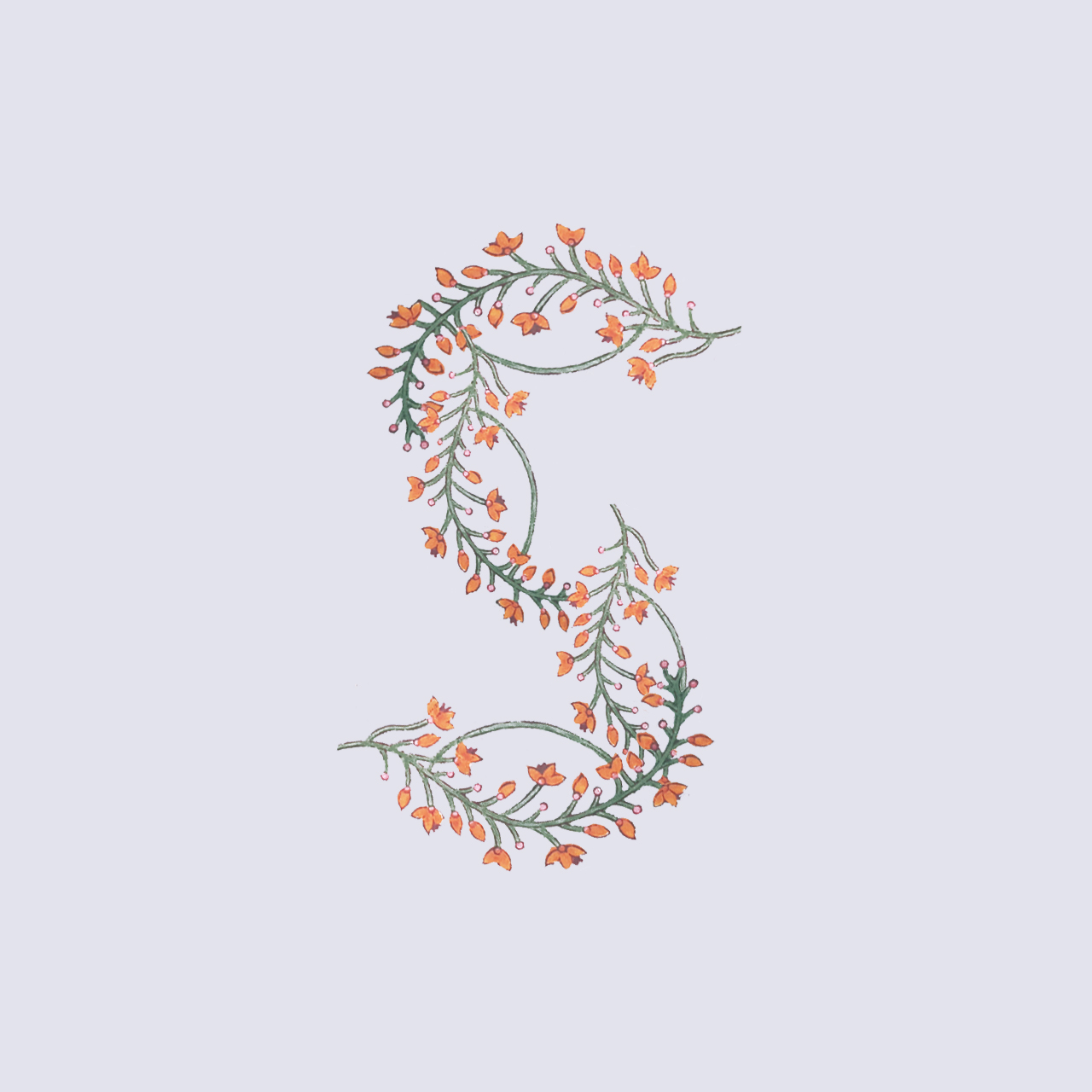 36days_s.jpg