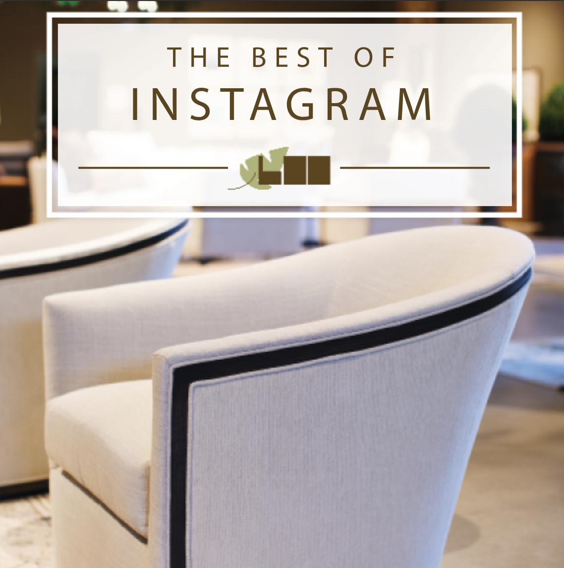 """Fall 2018 LEE Industries  """"Best of Instagram""""  lookbook"""