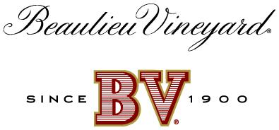 BV_NV_logo.jpg