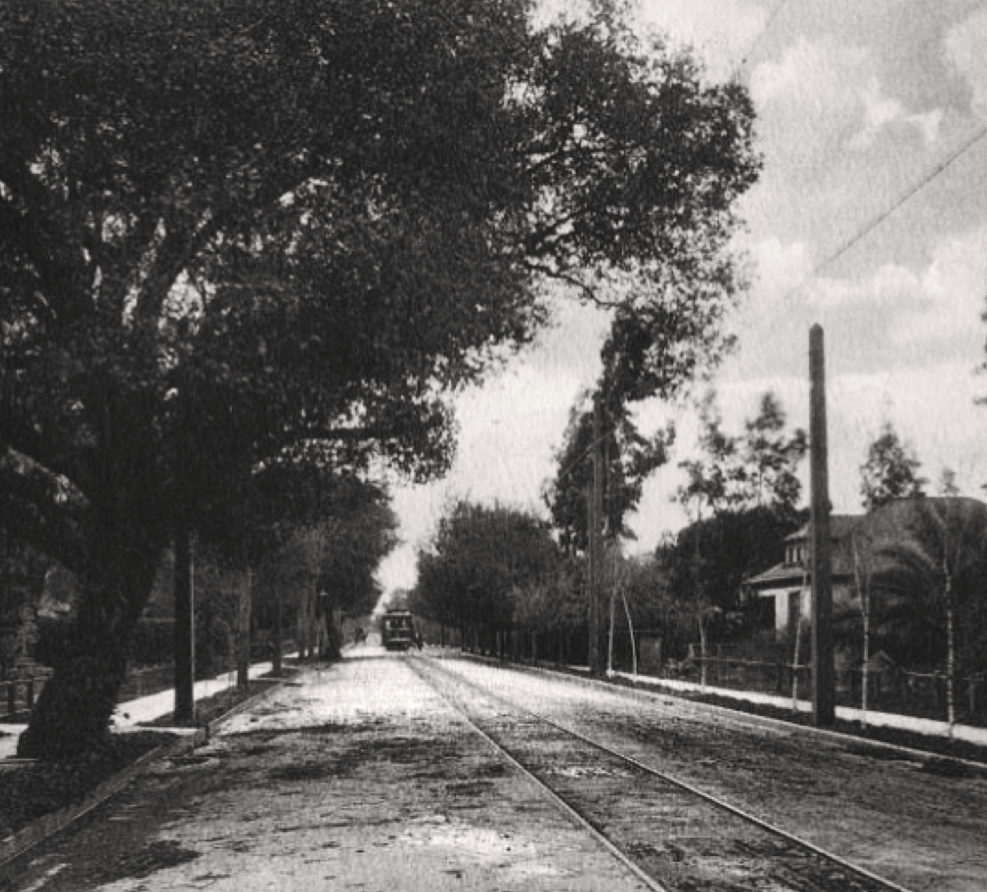 Waverley Street, circa 1912. Distant trolley car and sidewalks, but not yet paved.