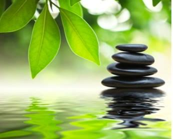 Rocks+and+leaves+Mindfulness+image.jpg