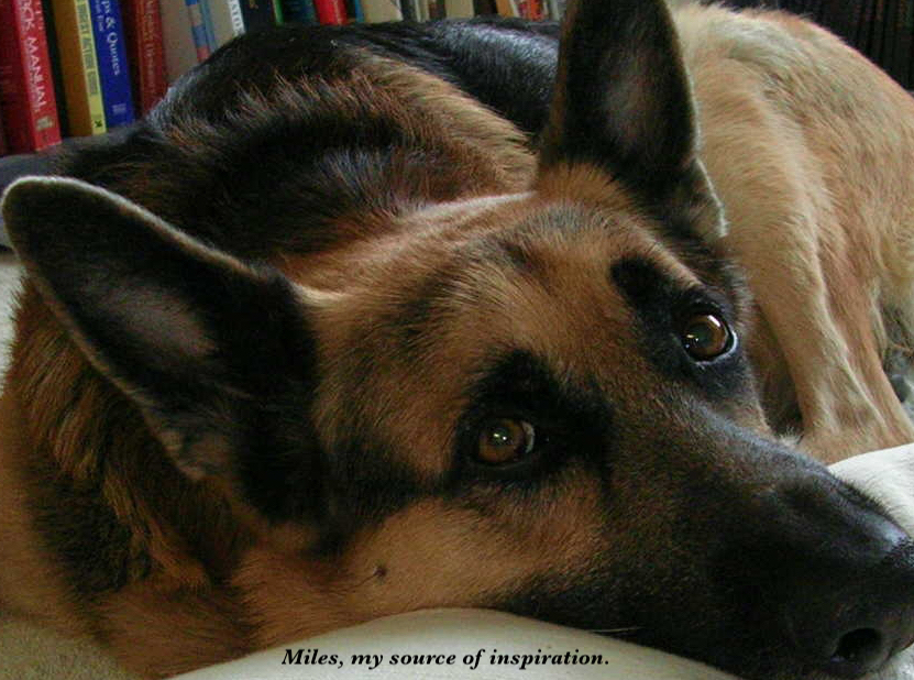 Miles, my source of inspiration for the creation of the Classical Music Therapy for Pets Album Series